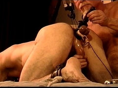 CBT Predicament Bondage...Do not move.