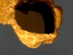 Pajero de Glory Hole  PLAZA LIMA SUR- Cromático