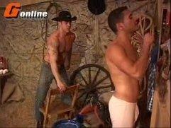 gay porn - brazilian - g online - canavial da fude��o - brazilians hot cowboys fucking (10m)